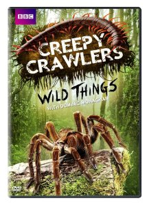 Wild Things Season 1 DVDs OUT NOW!